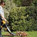 WORX Trivac mulching dead leaves