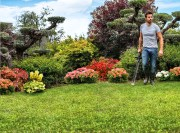Early Fall Lawn Care That Will Reap a Healthy Lawn in the Spring