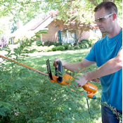 Trimming Hedges with Corded Hedge Trimmer