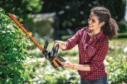 How to Trim Hedges & What Hedge Trimmer to Use