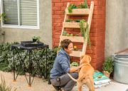 Easy DIY Planter Ladder Living Wall!