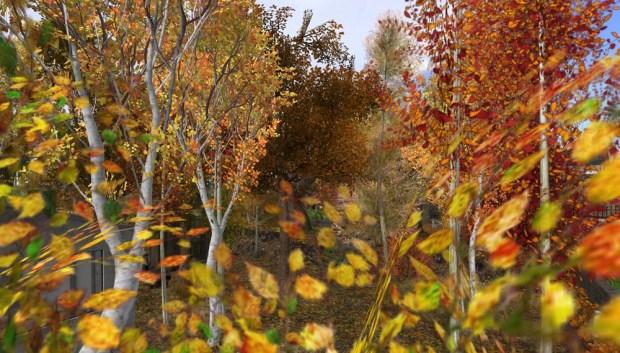 Studio Skye birch grove set