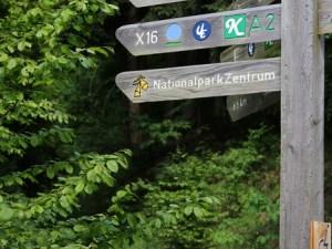 """Auf den Weg ins Grüne - """"In die Wildnis 2"""""""