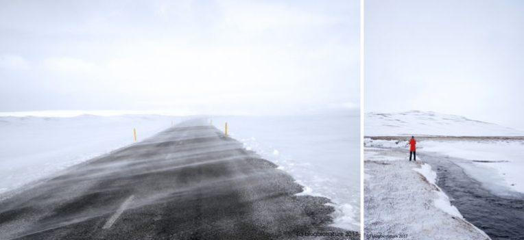 blogbionature_iceland_landscape