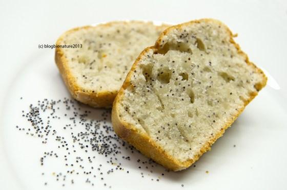 cake citron pavot blogbionature
