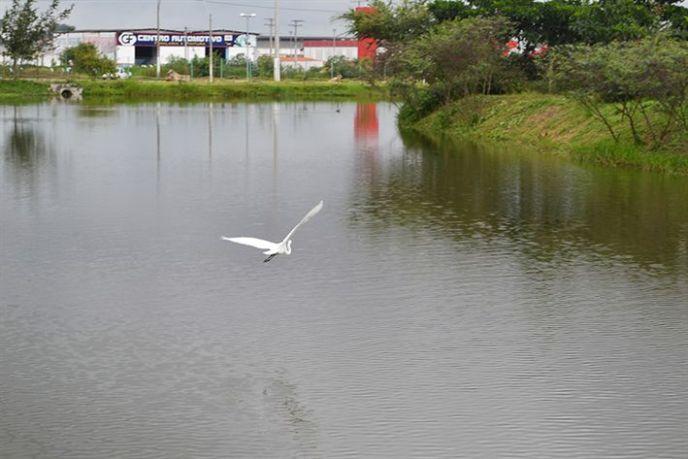 Academia da Terceira Idade Parque da Lagoa Foto Arivaldo Publio (3)