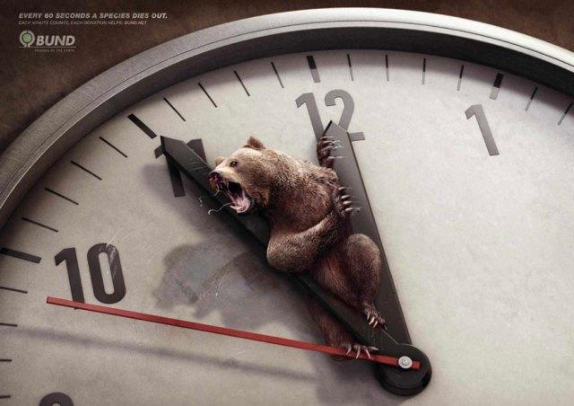 Cada 60 segundos una especie se extingue. Cada minuto cuenta