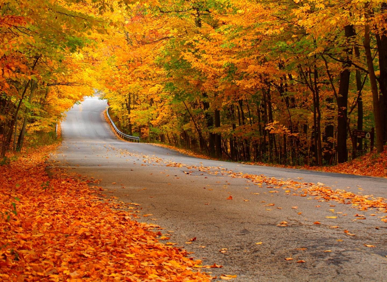 Canção de outono