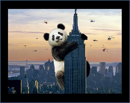 Kong Panda