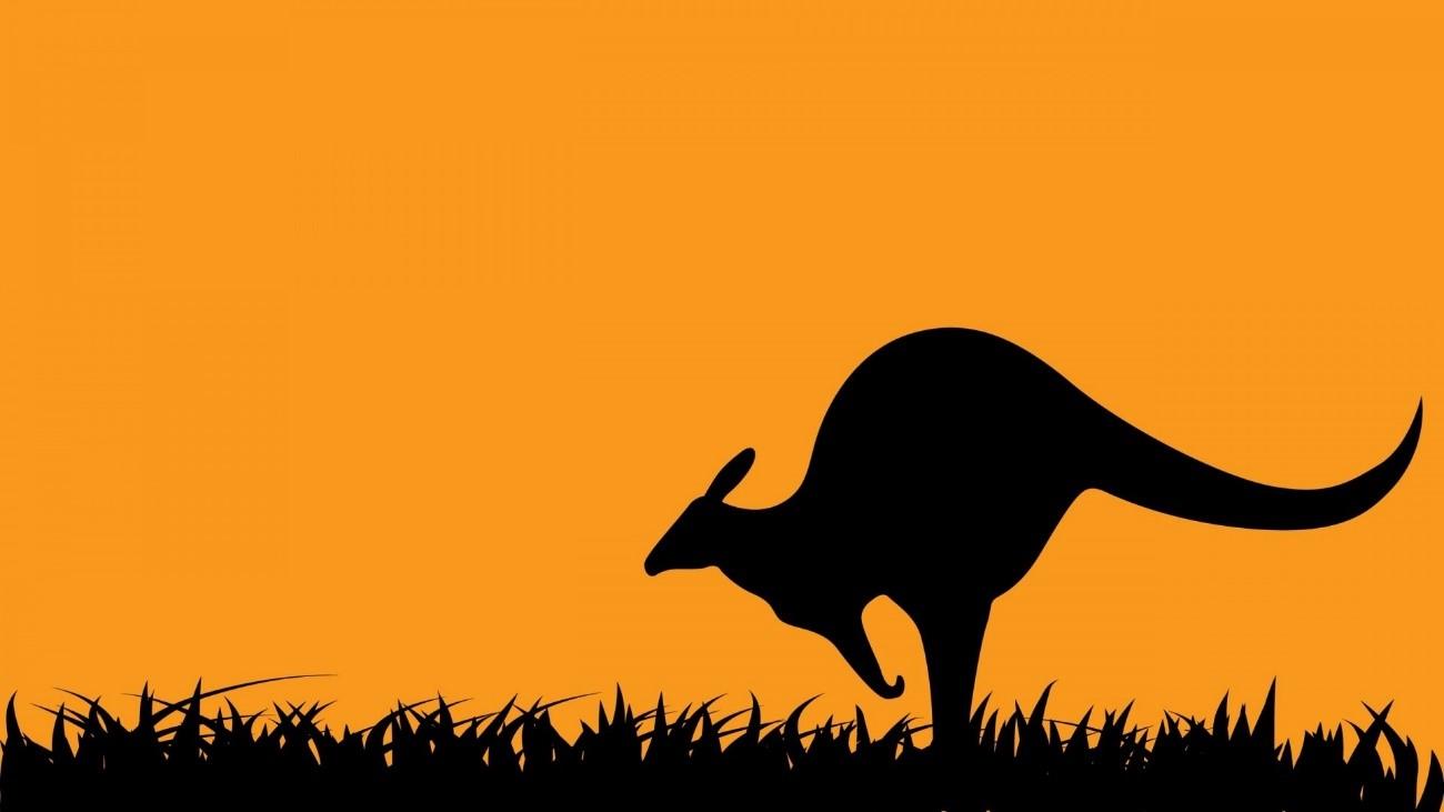 O Salto do Canguru