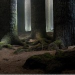 Harry Potter BlogHogwarts HP7 II Locación 03