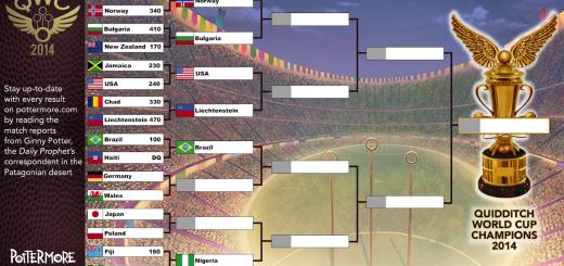 Harry Potter BlogHogwarts Copa Mundial de Quidditch