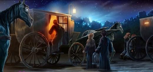 Harry Potter BlogHogwarts Orden del Fenix Pottermore Momentos (5)