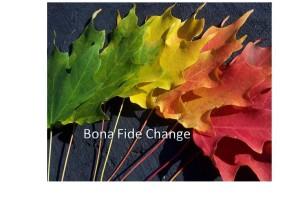 Bona-Fide- Change-Trid