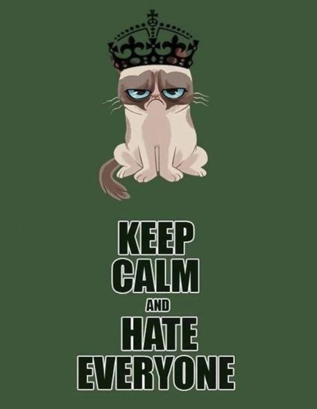 "Grumpy Cat: ""Keep Calm and Hate Everyone"""