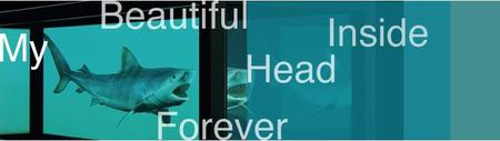 Hirst_my_beautiful_head