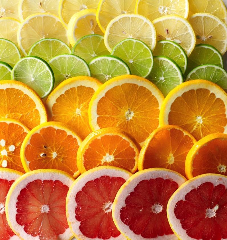 citruseditorial_v9