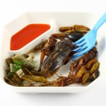 Spicy herb fried insect wings in food dish and blue fork.
