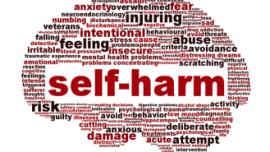 self harm