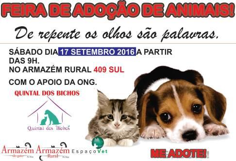 cartaz da feira de adoção pet do Armazém Rural