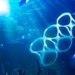 Oceanos terão mais plástico que peixes