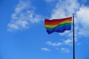 5 projetos para combater a homofobia na escola