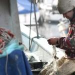 FAO elabora directrices para evitar la pesca ilegal