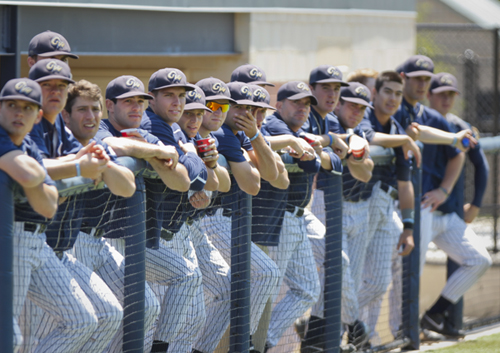 The baseball team cheers on their teammates during a game this season. Hatchet File Photo