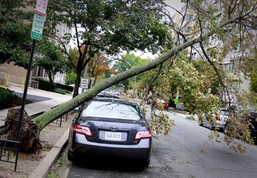 Hurricane Irene, damage