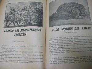 Lecturas nacionales de El Salvador de Saúl Flores.