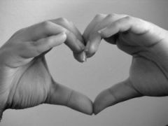 Photo of two hands held to form a heart outline