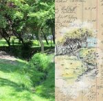 Jillian Crider, Plein Air at Bear Creek Park