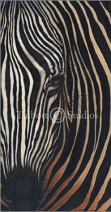 """Zebra II,"" Original oil by Eugenia Talbott"
