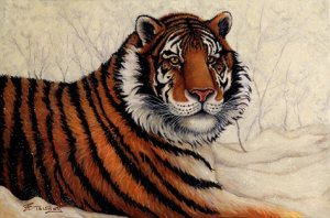 """Siberian Majesty,"" original oil painting of a Siberian Tiger by Eugenia Talbott"