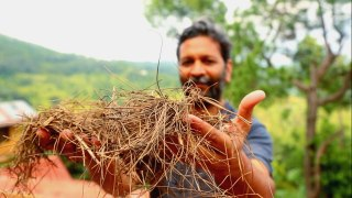 [UNStories #42] India: The Power of Pine Needles