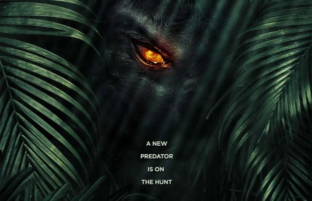 The-Jungle-Art