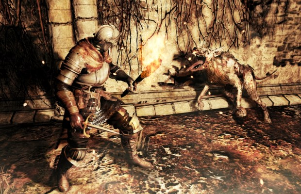 Dark Souls II (6)