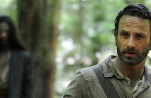 the-walking-dead-season-4-banner