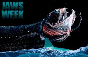 JAWS-WEEK-1