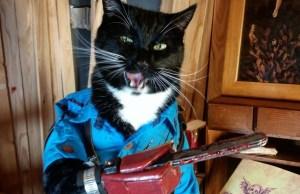 evil-dead-cat
