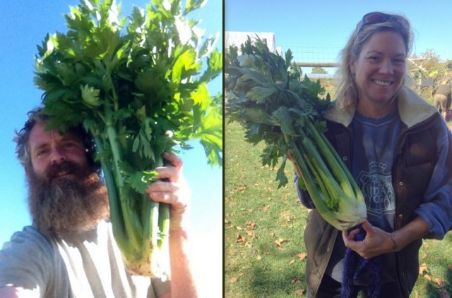 Farmer Tom and washer extraordinaire Jackie with massive celery.
