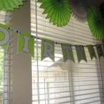 Dirty Thirty Birthday Decorations