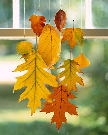 DIY Hanging Leaves