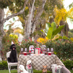 Love this Black and red dog Birthday Party!