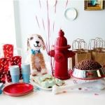 Super Cute Dog Birthday Party