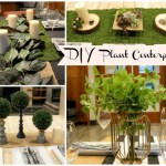 4 Lovely DIY Plant Centerpieces
