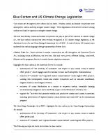 Blue Carbon and US Climate Change Legislation, Policy brief, Blue Climate Solutions (27 May 2010)