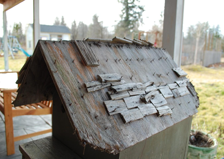 birdhouse-roof-empty1