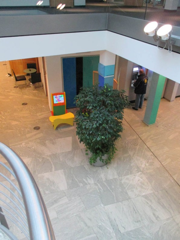 Office-Plants #9