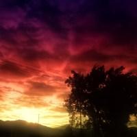 Morning or Eveneing | Blurbomat.com